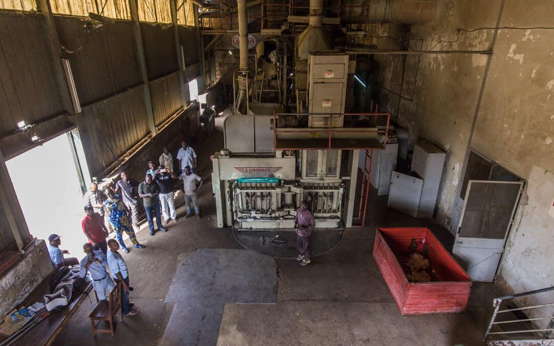 Visite d'une unité d'égrenage de coton