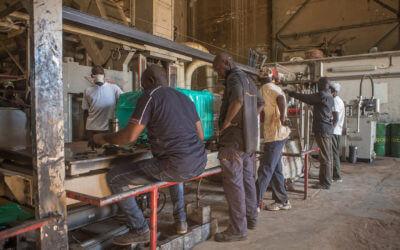 Ouvriers en plein travail